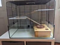 Little Friends Savoy Gerbilarium Cage, 58.5 x 38 x 47.5 cm and Rodipet Hamster House Maze 31x20