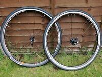 Campagnolo khamsin road bike wheel set