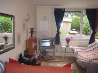 Twin room to share,Available 8 October,All bills inclusive.Amazing Garden,open plan living room,TV