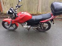 2013 Yamaha ybr125 learner legal 125 cbt 125cc