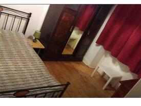 single room immediatly