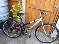 """RALEIGH ladies bike 26"""" wheels"""
