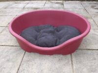 Large plastic dog bed with a new fabric bed and used one and a cover