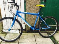 "Men bike 26"" challenge in excellent condition like new"