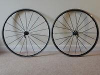Mavic Ksyrium Elite Wheels with Campagnolo 11 speed freewheel