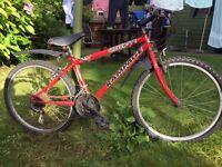Red 15 speed mountain bike 23' wheels low price