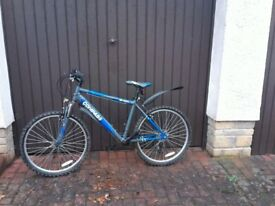Trail Bike for Sale