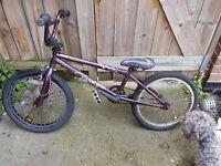 BMX Diamondback Child's Bike