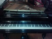 Piano duets ; Piano player /pianist wanted to play classical duets