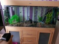 4ft fully equip fish tank