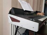 Korg PA4X 76 Note plus PAAS Speaker