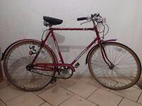 "Vintage gents city bike - Universal Riviera Sport - tall 22"" frame"