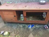 Pets at home rabbit hutch