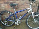 Gary Fisher Aluminium 24 speed Mountain bike
