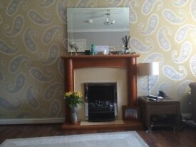 Electric fire and fireplace. Great condition. £70 oni