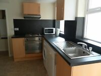 12 Nelson Street, 1 ROOMS REMAINING, MINUTES FROM UNI.