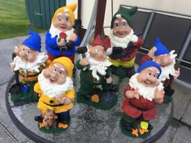 ATTENTION ALL GNOME LOVERS FOR SALE A COLLECTION OF SEVEN GNOMES £5 EACH