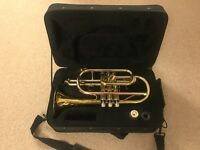 Cornet Bb and travel case Sonata