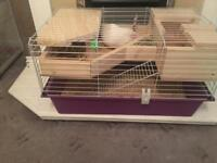 Penthouse for gineapig hamsters cage