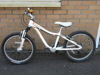 """Specialized Hotrock Children's 20"""" Bicycle"""