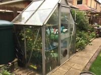Greenhouse for sale 6 x 4
