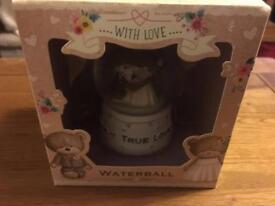 Bride and groom water globe
