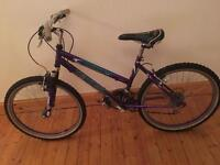 Tempest north shore girls bike