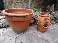 Terracotta Plant Pots - Chingfoprd, London E4