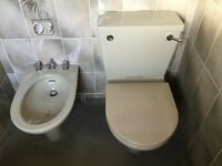 Pastel green bathroom suite (Ideal Standard)