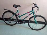 Female Bike just £10