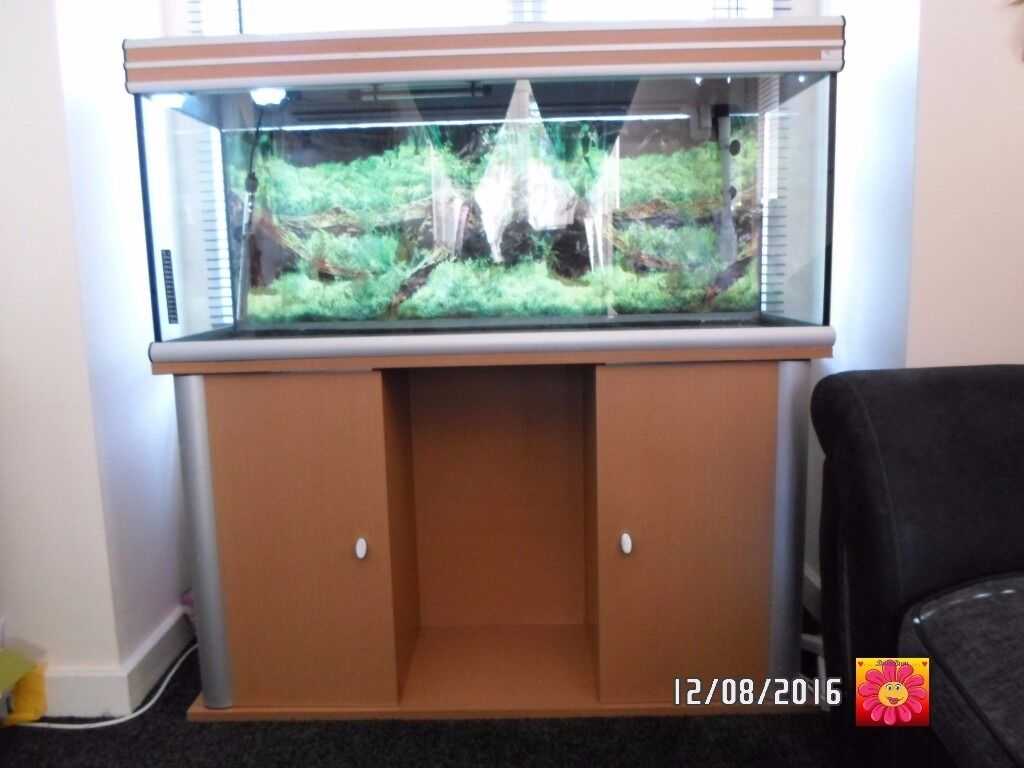 Cabinet aquarium fish tank tropical - Aquatlantis Ambiance 4ft 120 Light Oak Tropical Aquarium Fish Tank And Cabinet