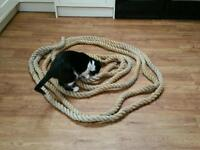 "40 foot length thick rope 4 & 1/2"" circumference"