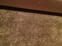 FREE carpet & underlay