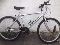 Raleigh Max. Male Mountain bike. Fully serviced, fully safe and ready to go.