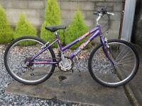 bike raleigh krush 24''