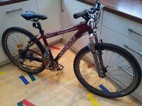 2003 Specialized Stumpjumper Mountain Bike