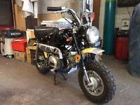 Easy rider M50 monkey bike. Honda 3 speed auto engine fitted