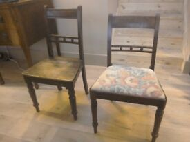 Two Antique Regency mahogany occasional chairs / dining chairs