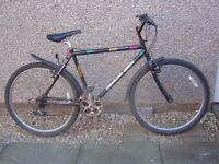 "Diamond Back Outlook Mountain Bike ~ suit shorter rider 5'1"" to 5'9"""