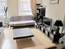 Large ONE DOUBLE bedroom apartment - Electric Avenue, Brixton, London SW9