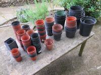 plastic flower pots, job lot