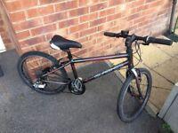"islabike beinn 20 kids childs bike large sram 20"" wheel"