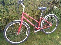 Ladies trek bike