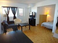 Furnished Downtown Studio, excellent value, great location