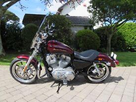 HARLEY DAVIDS0N 883 SUPERLOW