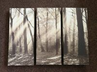Wood, Forest, Tree Sepia Effect Canvas Pictures x 3