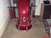 Percussionist Available