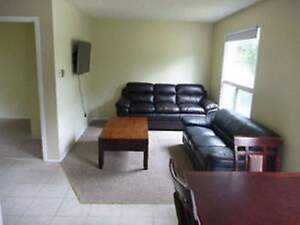 Holly Street Student Rental  - Five Bedrooms House for Rent Kitchener / Waterloo Kitchener Area image 3