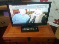 "Panasonic 19"" lcd widescreen tv"