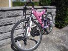 Ladies/Girls Mountain bike